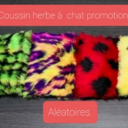 copy of coussin herbe a chat